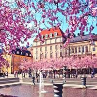 Инвестиции в бизнес в Швеции
