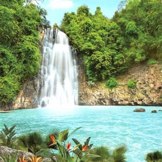 Туризм и гостеприимство