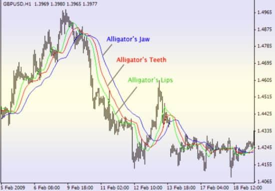 Индикатор Аллигатор для форекс