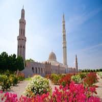 Оманский бизнес в свободной зоне
