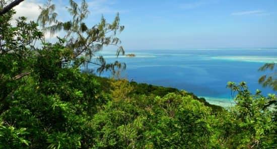 Корона / Государственная земля на Фиджи