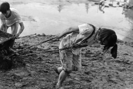 Голод в Китае, как результат коллективизации и уничтожения воробьев (1959-1961 гг.)