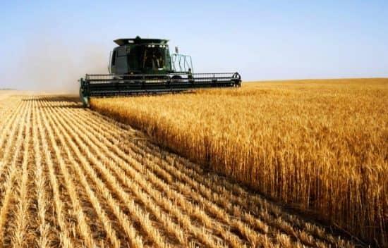 Закон убывающей доходности и сельское хозяйство