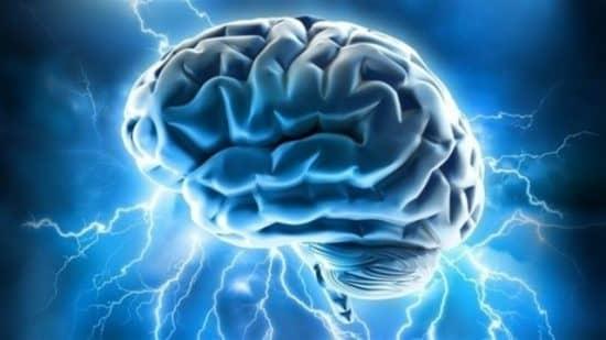 Префронтальная кора мозга и потребительский выбор