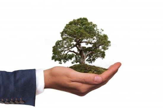 Забота об экологии и снижение вреда от предприятия