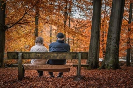 Количество детей в семье и внимание к престарелым родителям