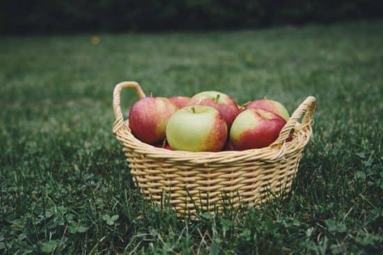 Оптимальное распределение ресурсов: пример со сбором фруктов